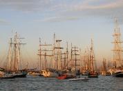 Sail 2010_8